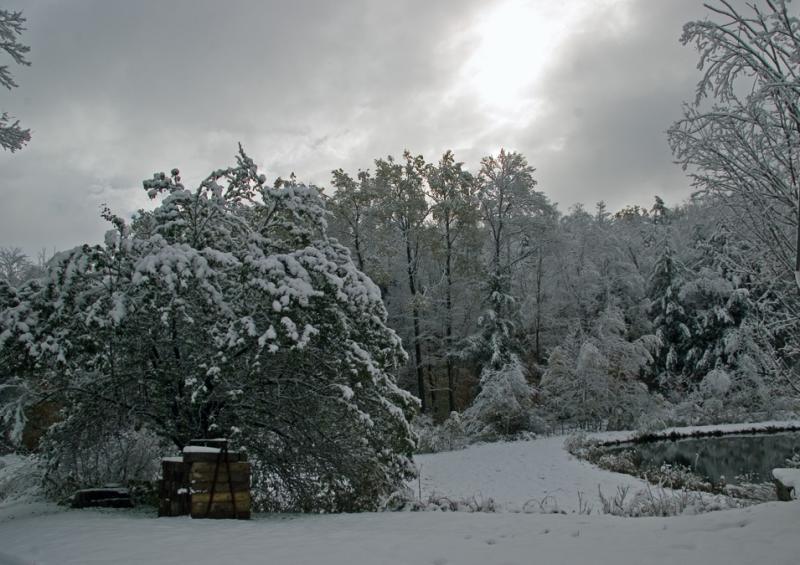 Big Snow