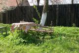 Bench outside