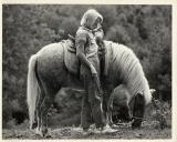 M and Pony
