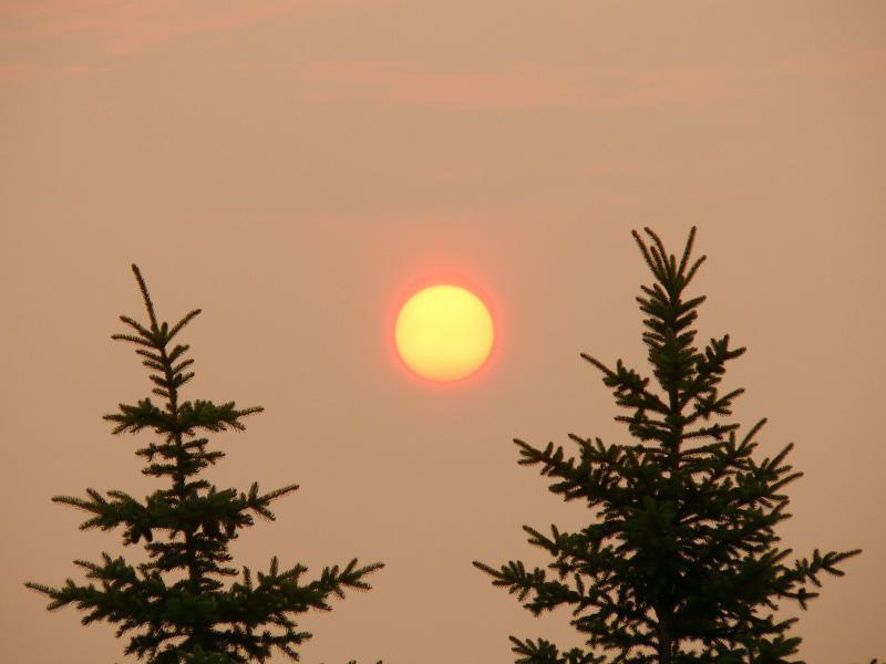 6 AM Toronto Sunrise Through the Smog Haze 05 pad June 28 2005.jpg