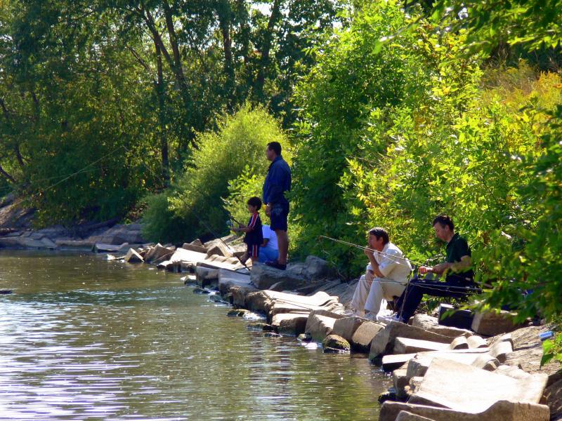 Fishing at Port Credit...