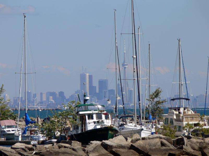 City skyline from Port Credit...