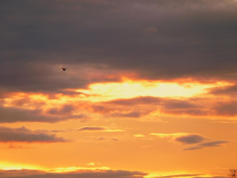 Sunset Sep 29-05.