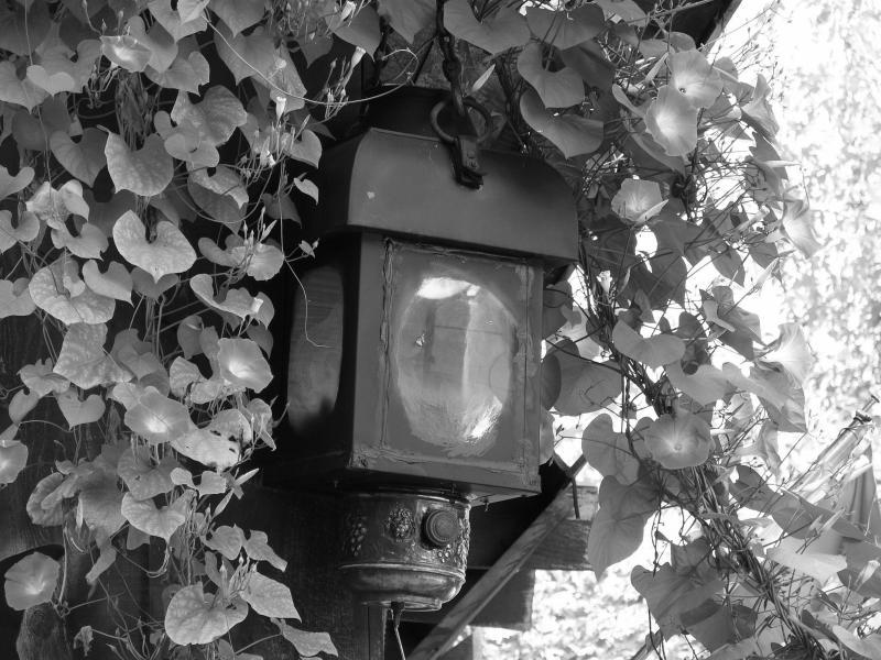 Old lantern...