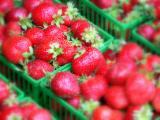 Fresh strawberry delights...
