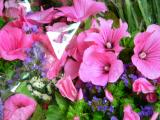 Fresh flowers.... great colours