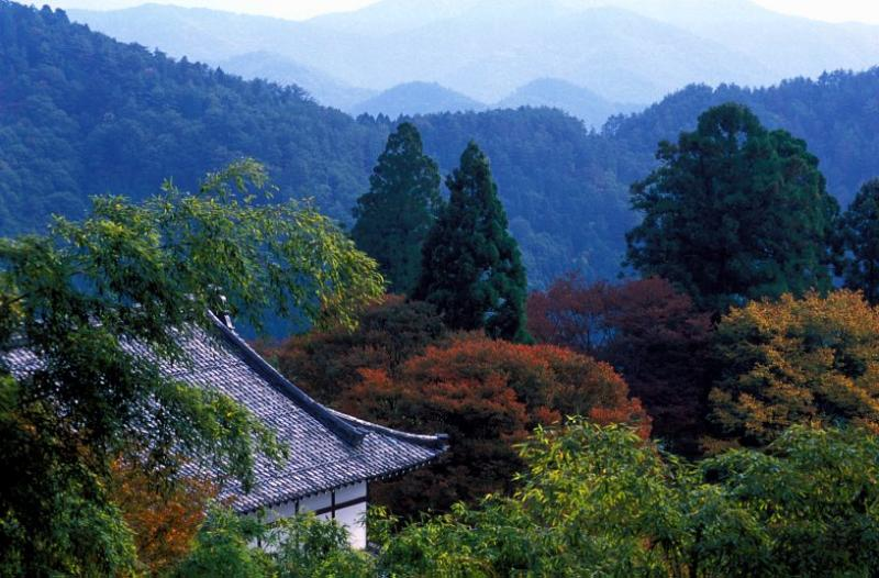 Kurama to Kibune walk near Kyoto