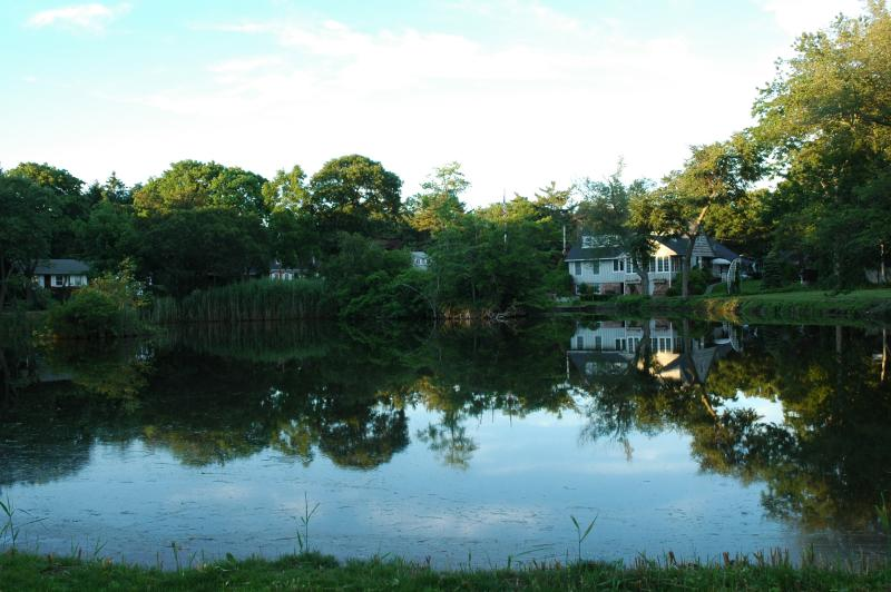 pond in Bayport