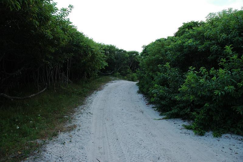 fire island walkway