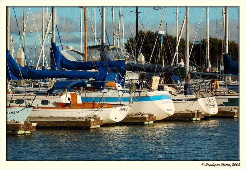 Unused boats