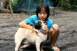 Girl and her pug: Ban Dom Kirek