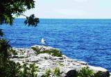 x-Georgian Bay.jpg