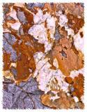Rock-003 .jpg