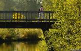 Runner and bridge