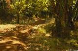 Alton Baker Park trail