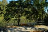 View of Delta Ponds