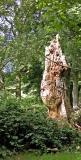 Treelith