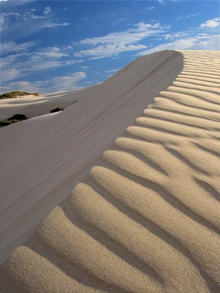 03-08 Oceano Dunes 24.jpg