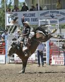 04-07 Rodeo  B 1.jpg