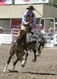04-07 Rodeo B 02.jpg