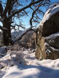 02-12 Snow 167.jpg