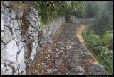 Inca Trail Day Four