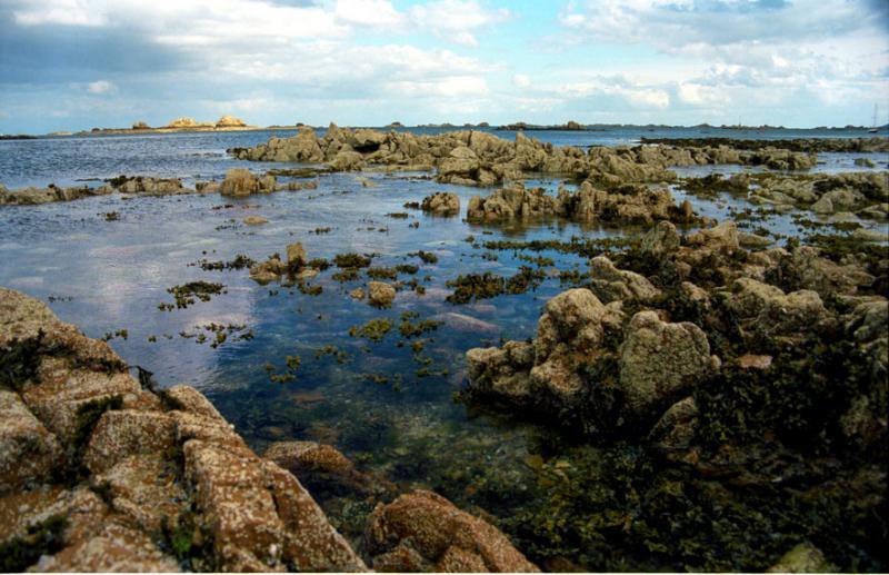 mer et récifs