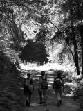 Vers le lac de Gers