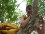 PICT5007 tinka laying on a tree limb.JPG