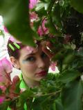 PICT5055 hiding amongst purple flowers.JPG