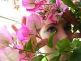 PICT5067 hiding amongst purple flowers.JPG