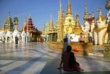 morning-Shwedagon.jpg