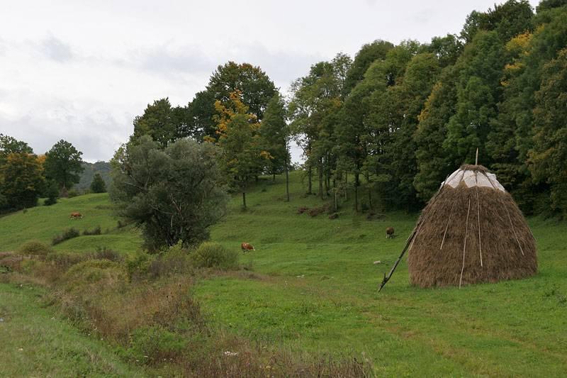 near Bihač,rural landscape