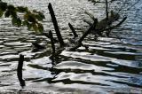 Plitvice Lakes20.jpg