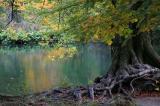 Plitvice Lakes23.jpg