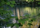 Plitvice Lakes48.jpg