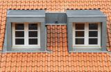 Twins in a orange-red roof