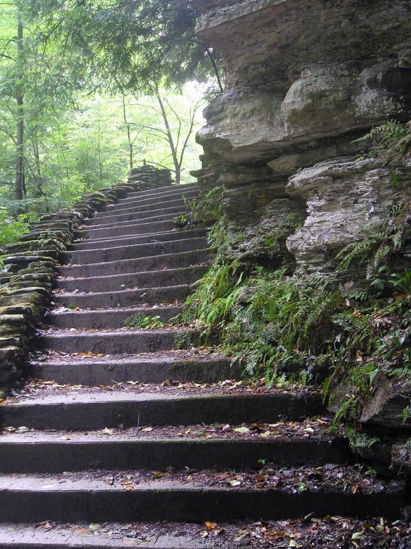 Stairs at Brook