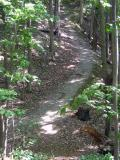 Crooked Trail