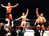 tag team pro wrestling wrestlers needed