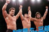 japan classic veterans pro wrestling