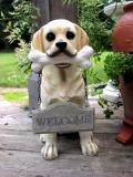 DogWelcome.jpg