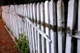 Fence on Warren June 12 2005 p.jpg