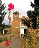 Flower and church