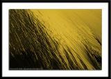 Abstract-0030.jpg