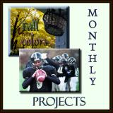 MONTHLY PROJECTS