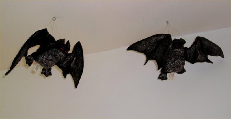 Gorey bats