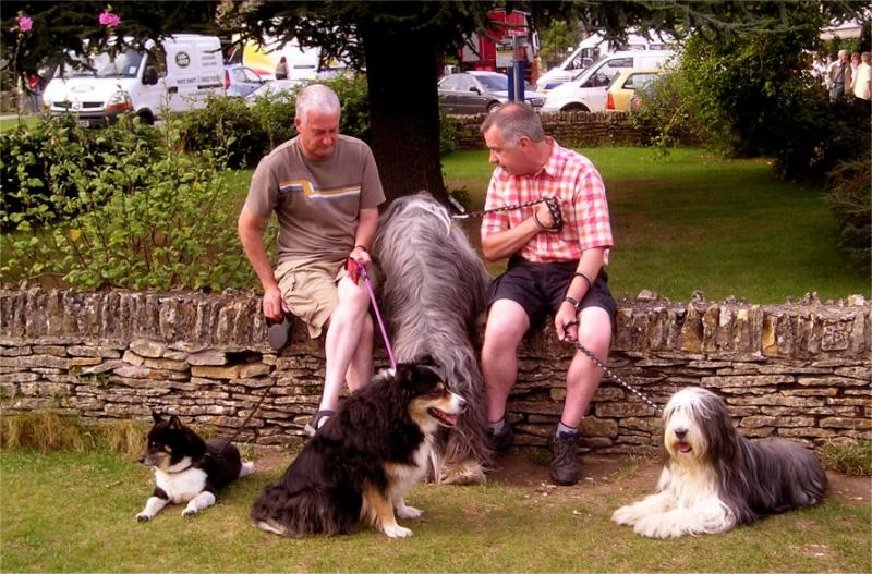 Bourton-on-Water dogs