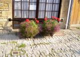 Blockley flowers