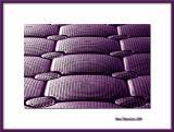 Violet pontoon, Torcy
